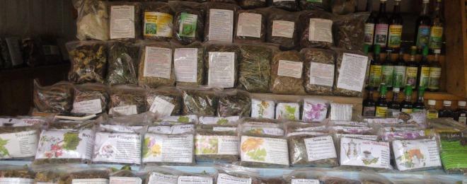 алтайские травы сборы от аллергии какие пищевой